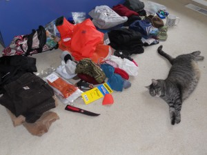 Bear the Boat Cat Helps Pack for Longlining